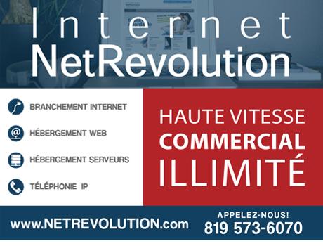 pub_netrevolution1.jpg