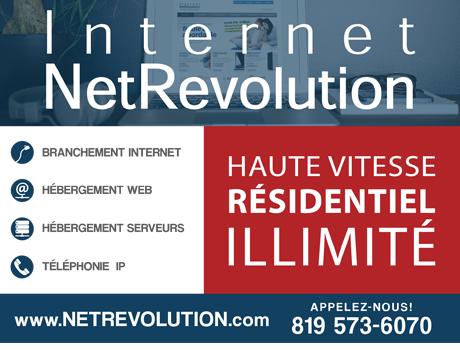 pub_netrevolution2.jpg